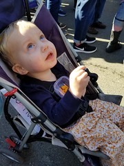 """""""Helicopter!"""" (quinn.anya) Tags: paul toddler pointing helicopter womensmarch womensmarchoakland womensmarch2018"""