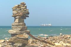 far horizons (Jerryhattric) Tags: boulderbay taylorsmistake bankspeninsula newzealand nz panasoniclumixdmcfz200 summer ship tanker farhorizons whitefrontedterns