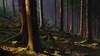Magic Black Forest (Max Angelsburger) Tags: deutschland germany badenwürttemberg badenwuerttemberg natur light fantastic wald wood wanderlust hiking exposure view countryside landscape landschaft warm january 2018 weather walk pretty winter sunlight sunrays sonnenstrahlen golden green bright moss treestump nature old tree sun fog mist gold mood atmosphere weekend feelgood feeling relax valley soft sharp morning brown northernblackforest romantic silence grass dawn fir stones magical