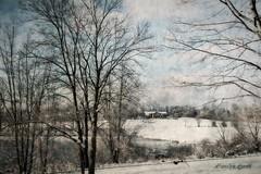 Winter Still (socalgal_64) Tags: winter cold snow snowy carolynlandi snowscape landscape nature woods pond lake water weather pennsylvania lehighvalley cabin coth5 belfastpa northamptoncounty