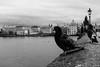 Prague in the eyes of pigeon (xalphas) Tags: karluvmost charlesbridge monochrome street bw architecture prague streetphotography blackandwhite