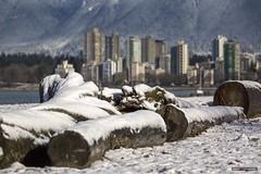 Beach Logs (Clayton Perry Photoworks) Tags: vancouver bc canada winter explorebc explorecanada snow mountains kitsbeach beach skyline buildings
