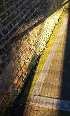 winter sun, highbury and islington station, n1, 2018-02-25, 16-07-03 (tributory) Tags: london islington n1 highbury highburyandislington innercity station railway overground transport tfl platform sunlight wintersun weather metalgrating lines shadows brickwork yellow