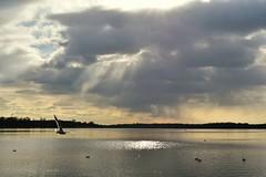 Tagesausklang ////  end of the day (Pixelchen1) Tags: nikon5500 nikonafs35mm114g sun eveningsun clauds wolken abendsonne lookinthesky blickindenhimmel water wasser lightreflection cold kalt lake see berlin tegel