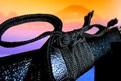 01-15-2018-Shogun-HMM (tobyas_reaper) Tags: macromondays myfavouritenovelfiction shōgunbyjamesclavell