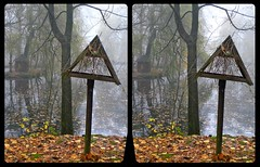 Municipal park in fall 3-D / CrossView / Stereoscopy / HDR through tonemapping (Stereotron) Tags: saxony sachsen vogtland reichenbach stadtpark autumn fall laub vogelhaus europe germany crosseye crosseyed crossview xview cross eye pair freeview sidebyside sbs kreuzblick 3d 3dphoto 3dstereo 3rddimension spatial stereo stereo3d stereophoto stereophotography stereoscopic stereoscopy stereotron threedimensional stereoview stereophotomaker stereophotograph 3dpicture 3dglasses 3dimage