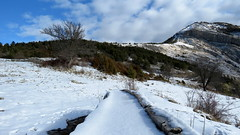Coump gelé (bernard.bonifassi) Tags: bb088 06 alpesmaritimes hiver fevrier 2018 counteadenissa eu canonsx60 thiery neige eau abreuvoir