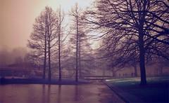 Misty Winter Day (farmspeedracer) Tags: winter january januar park fog nebel mist people cold sky ice icy pond 2018