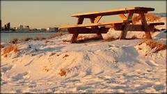 View to the city (Reykjavik, Iceland) (armxesde) Tags: pentax ricoh k3 island iceland reykjavik bank bench winter schnee snow wasser water atlantik atlantic ocean bay bucht faxa skyline stadt meer himmel ozean goldenhour goldenestunde