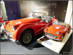 1960 Triumph TR3 and Half Size Pedal Car (Alan B Thompson) Tags: 2018 feb car transport lumix fz72 picassa