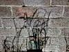 Dancing Shadows Down (Robert Cowlishaw (Mertonian)) Tags: brick brickpathway stormdrain grass shadows dancing lunchwalk downlooking mertonian robertcowlishaw canon powershot g1x mark iii canonpowershotg1xmarkiii walking thesongisplaying deepseeksdeep melancholy swirling curvy texture