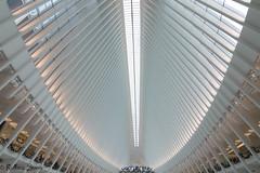 Estacion de Calatrava en New York (r_suria) Tags: 1116 calatrava estacion estaciondecalatrava estaciondenuevayork estaciondetren lightroom nikon nikond3200 nuevayork rubensuria tokina tokina1116 newyork estadosunidos us