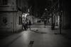 Downtown..... (Dafydd Penguin) Tags: blackandwhite blackwhite black white monochrome mono noir urban city street raw scene after dark night shot barceloneta barcelona catalunya catalonia spain leica m10 summicron 35mm f2 asph
