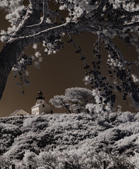The Old Point Loma Lighthouse in Infrared (Bill Gracey 20 Million Views) Tags: infrared convertedinfraredcamera ir otherworldly surreal oldpointlomalighthouse trees composition nature sandiego cabrillonationalmonument