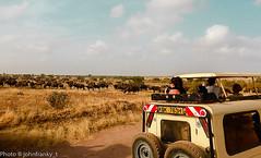 Safari-Tsavo National Park-Kenya (8) (johnfranky_t) Tags: safari kenya kenia tsavo national park bufali fuoristrada 4x4 savana ruote fotografi cielo nuvole johnfranky t targa corna