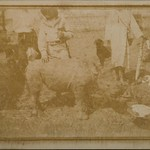 A baby rhinoceros tamed with sugar. Beside it Jorma and Kirsti Gallen-Kallela with Djonogi and a dog. thumbnail