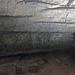 Limestone & dolostone walls (Great Relief Hall, Mammoth Cave, Kentucky, USA)