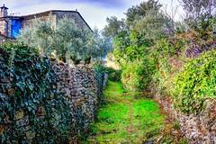 Pueblo de Lecina (Huesca-Pirineos-España) (Carlos M. M.) Tags: sobrarbe huesca aragón pirineos hdr sony sonyalpha6000 peñaguara nature naturaleza excursión hiking