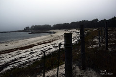 Galicia - illa de Arousa (Ismael Owen Sullivan) Tags: galicia nature nikon naturaleza natural dark gallego illa de arousa d5300 digital wild sea mar lark landscape