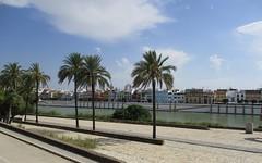 Quartier de Triana - Séville (Espagne) (Sur mon chemin, j'ai rencontré...) Tags: séville andalousie espagne elarenal quartierdetriana triana darseduguadalquivir canalalphonsexiii