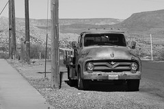 '55 Ford with Arizona shade trees (twm1340) Tags: 1955 ford f100 flatbed truck clarkdale az