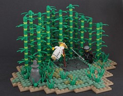 Student V.S. Master (-Matt Hew-) Tags: lego caste moc kingdoms ninja ninjago sensei technique bamboo coth5 long rock path countryside book