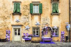 Il color lilla (forastico) Tags: forastico d7000 venzone friuliveneziagiulia lilla lavanda