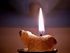 #macromondays #flame (BrigitteE1) Tags: macromondays flame teelicht tealight polarbear wachs wax eisbär hmm