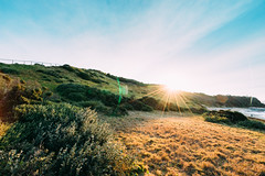 Long Reef Point Sunset (haoguoju) Tags: landscape australia nsw newsouthwales sydney winter outdoor a7m2 a7 sony sonya7markii sonyilce7m2 fe bushwalking hiking mountain fe1635mmf4zaoss 1635mmf4 1635mm f4 coastalwalk zeiss zeiss1635mmf4 longreefpoint longreefpointlookout sea variotessar vario tessar ocean cliff grass longreefpointwalk golfcourse sunset blue green seascape