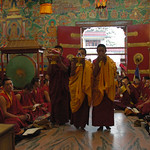 Tibetan Buddhist monks making offering towards the main shrine, rows of monks, video cameras, mural of Buddha's lives, double doors, green leather drums, pink gray marble floor, Sakya Lamdre (Fruit and Path), Tharlam Monastery, Boudha, Kathmandu, Nepal thumbnail