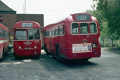 RF525. MLL 943 + RF354. MLL 991: London Transport (chucklebuster) Tags: mll943 mll991 london transport edgware rf525 rf354 aec regal iv metrocammell