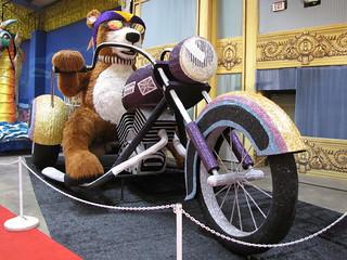 Bear on Bike