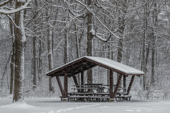 Snowy Sunday morning.... (Kevin Povenz Thanks for all the views and comments) Tags: 2018 february kevinpovenz westmichigan michigan ottawacounty ottawacountyparks ottawa jenison sunday morning snow snowy weather cold canon7dmarkii sigma24105art pavillion trees tree woods park picnictables branches