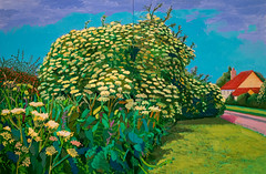 David Hockney, Elderflower Blossom, Kilham, July 2006 1/16/18 #metmuseum (Sharon Mollerus) Tags: metropolitanmuseumofart newyork unitedstates us cfptig18