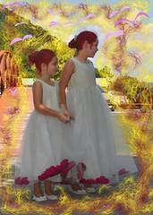 Firebirds (Dixon Marshall) Tags: 20th anniversay wedding vows harlee neveah andrea portrait wacom particleshop corel dxo photozoom purple birds fire moorefield wv
