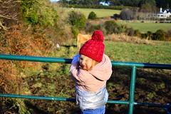DSC_7312 (seustace2003) Tags: baile átha cliath ireland irlanda ierland irlande dublino dublin éire glencullen gleann cuilinn