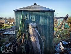 EALING 76 (Nigel Bewley) Tags: ealing london england uk londonist w5 shed allotment allotments gardens minimalist observation light pattern texture suburban countryside humanless creativephotography artphotography unlimitedphotos january january2018 nigelbewley photologo