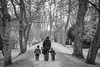 20180117_F0001: One parent and two kids in the park (wfxue) Tags: walking winter hats parent kids children walk park trees footpath portrait people candid street blackandwhite bw bnw monochrome