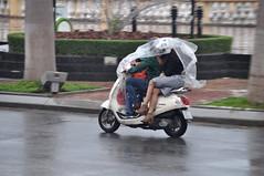 Wet legs (Roving I) Tags: couples legs rain plastic helmets street motorcycles weather wet danang vietnam