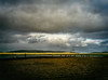 Enigma (Colormaniac too - Many thanks for your visits!) Tags: ringofbrodgar standingstones orkney scotland uk europe neolithic monument testament landscape cloudscape digitalpainting travel mystery topazstudio netartll hss