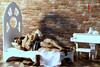 i can't sleep without you (photos4dreams) Tags: henrywilliamdalglieshcavill superman manofsteel dccomics doll toy photos4dreams p4d photos4dreamz play fashion mode puppenstube tabletopphotography british actor blackhaired handsome 16 celebrity actionfigure actionfigur stainlesssteelskeleton sexy naked mann male man art akt aktfotografie aktphotographie nude photography model thetudors clarkkent dress fashionistas outfit kleider phicen seamless takeshikaneshiro taiwanischjapanischer schauspieler taiwanesejapanese gumsingmo leo leonardo guitar gitarre konzertgitarre piano klavier flügel