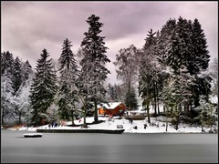 Imbiss am See (almresi1) Tags: hütte cabin house lake ebnisee trees bäume wald wood forest winter snow schnee landscape landschaft nature althütte ice eis gefroren