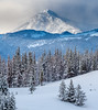 _X2I2311 (adovision) Tags: yellowstone usa national parks wolves winter landscapes wolf pack