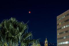 Super Blue Blood Moon (tjbarber101) Tags: moon lunar eclipse lunareclipse astronomy hollywood losangeles california stars night nightsky sky