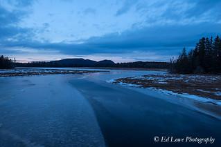 Winter at Bass Harbor Marsh