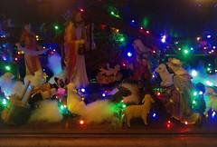 Crèche (Gilbert-Noël Sfeir Mont-Liban) Tags: crèche noël weihnachten crib christmas nativité nativity illuminations lights jésus jesus kesserwan montliban mountlebanon liban lebanon