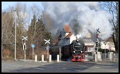 Dampfross (Harald52) Tags: hsb schmalspurbahn dampflokomotive wernigerode harz sachsenanhalt technik