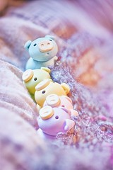 50/365 : Pigs in a Blanket (♥GreenTea♥) Tags: pig eraser pigeraser pigs erasers pigerasers bluepig pinkpig purplepig greenpig yellowpig blue pink purple green yellow iwako iwakoeraser iwakoerasers イワコー t1i canon canont1i canont1irebel canonrebel eos canoneosrebelt1i ef100mmf28macrousm canonef100mmf28macro hdr googlenikcollection nikcollection colorefexpro viveza hdrefexpro 365 photoaday pictureaday project365 365toyproject oneobject oneobject365daysproject 365the2018edition 3652018 day50365 365day50 day50 project36550 19feb18 project36502192018 02192018 odc ourdailychallenge bedding odcbedding ourdailychallengebedding