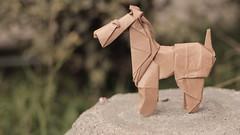 Fox Terrier (Marcos Origami) Tags: chinese year handmade brown dog fox terrier origami papiroflexia roman diaz origamiart art perro paper paperart