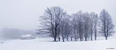 Egiriñao (Jabi Artaraz) Tags: jabiartaraz jartaraz egiriñao gorbea nieve invierno negua
